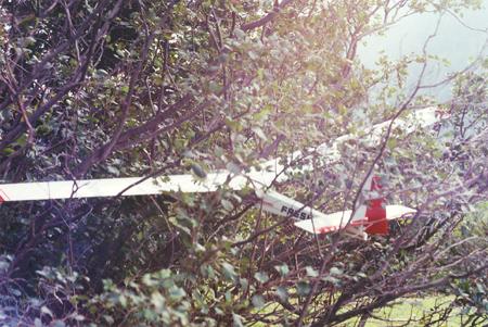 Pristanek v grmovje